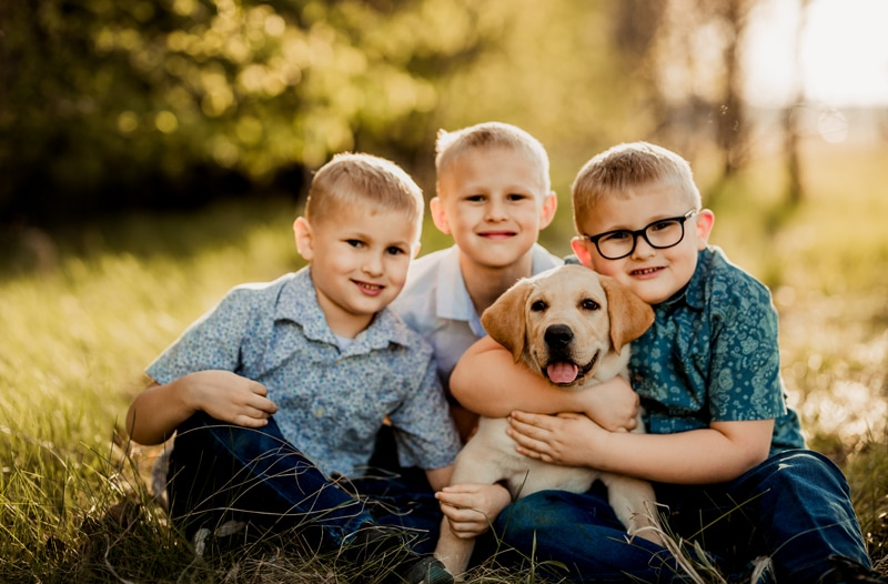 Family Photographer, Three young brothers with their loving dog,